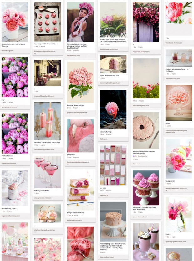 pink, mood board, collage. pinterest