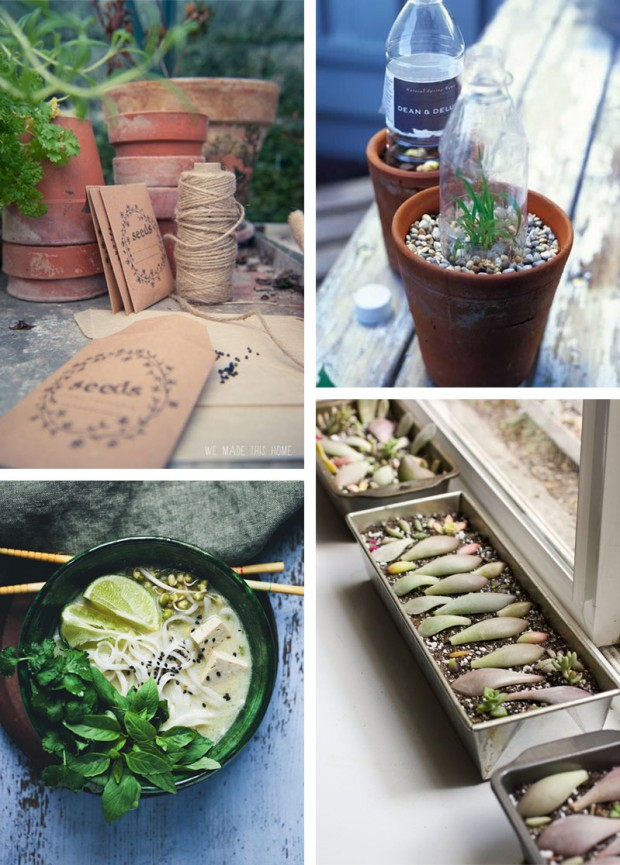 Spring fun for indoors and out