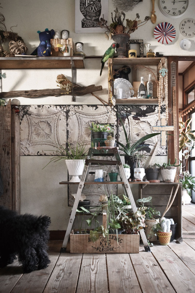 How to style with plants indoors