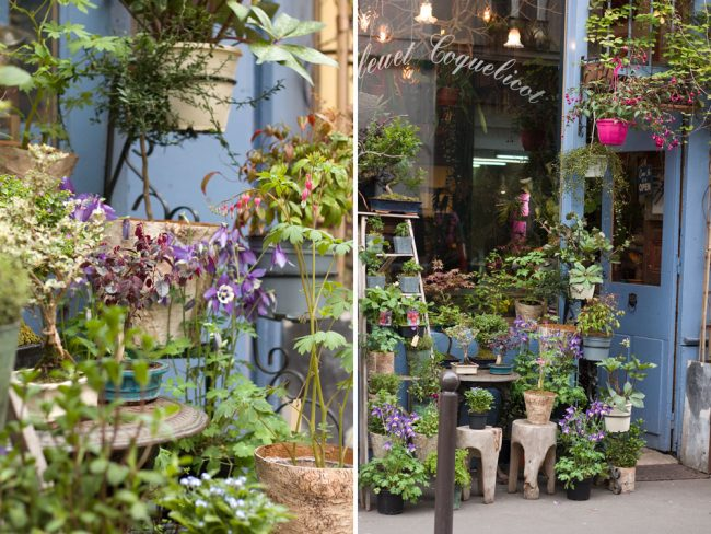 Best Paris plant and flower shops Bleuet Coquelicot