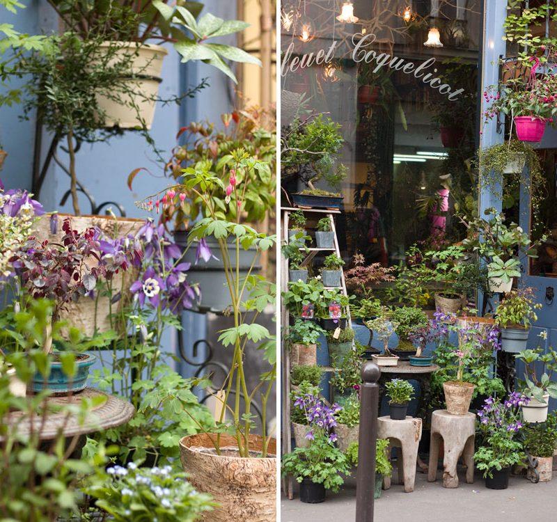 Best Paris plant and flower shops Bleuet Coquelicot