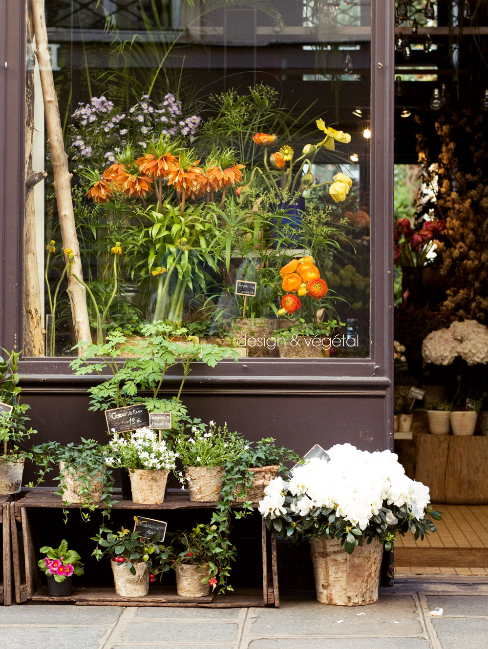 Garden Bush: TOP 5 PARIS FLOWER SHOPS