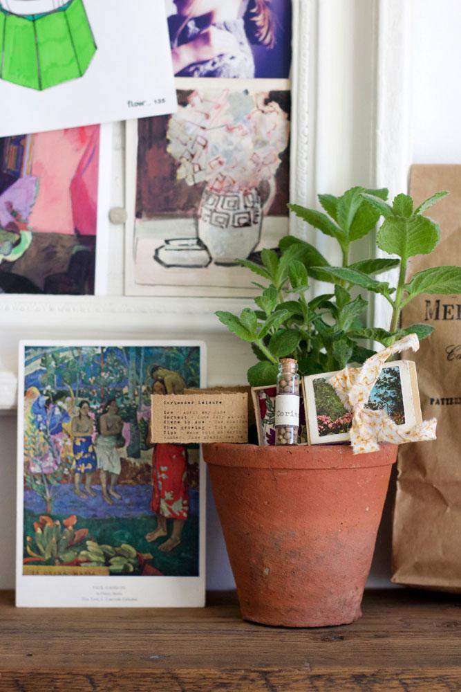 DIY seed match box gift