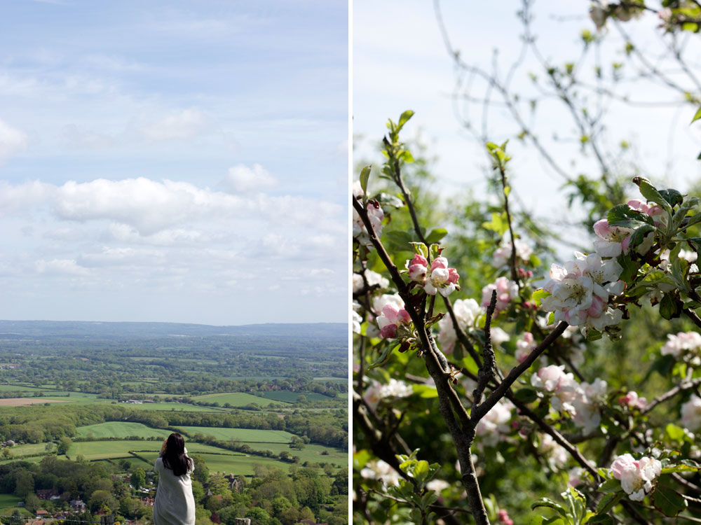 Ditchling Beacon East Sussex
