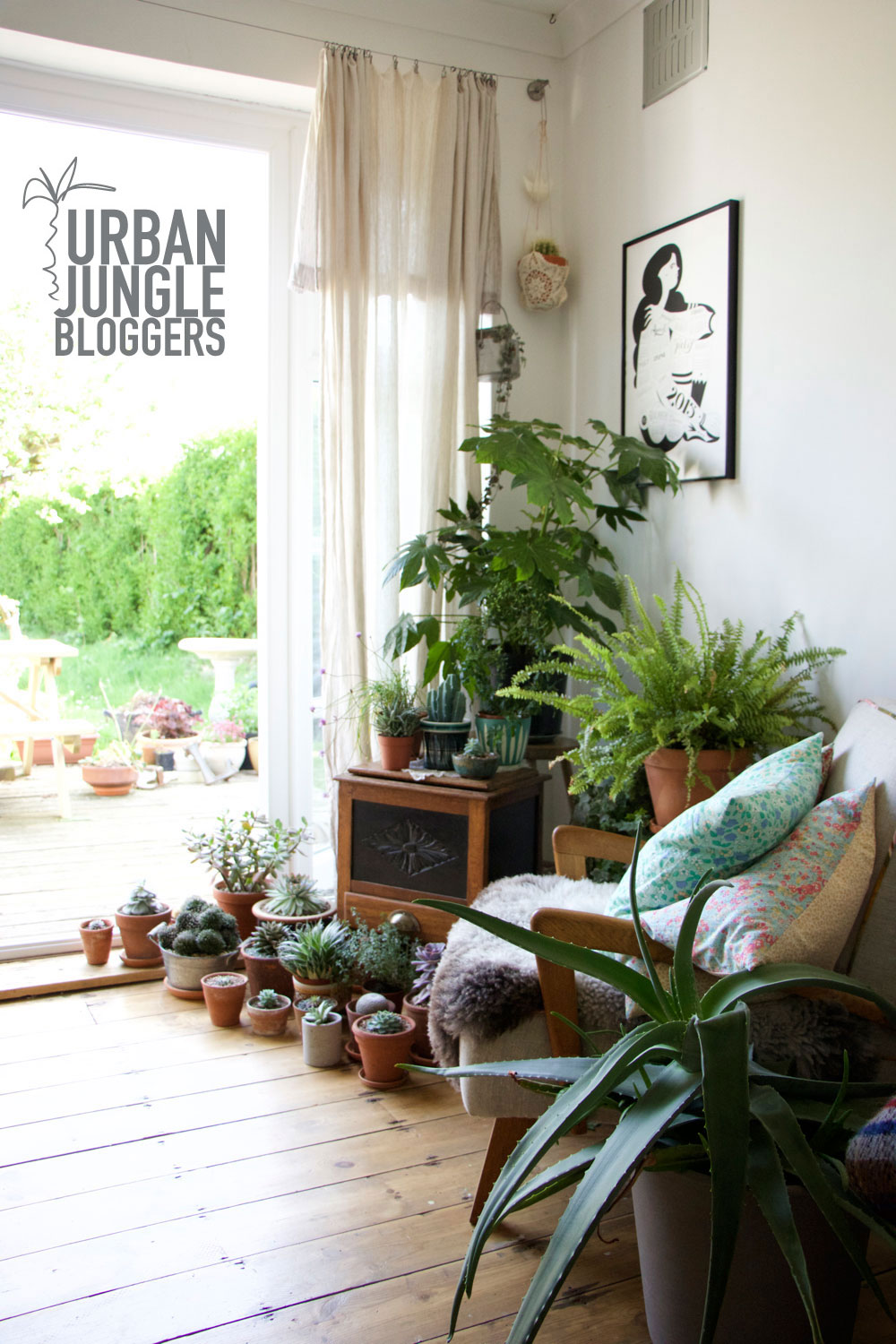 URBAN JUNGLE BLOGGERS MAY – OUR WHOLE PLANT GANG - Lobster and Swan
