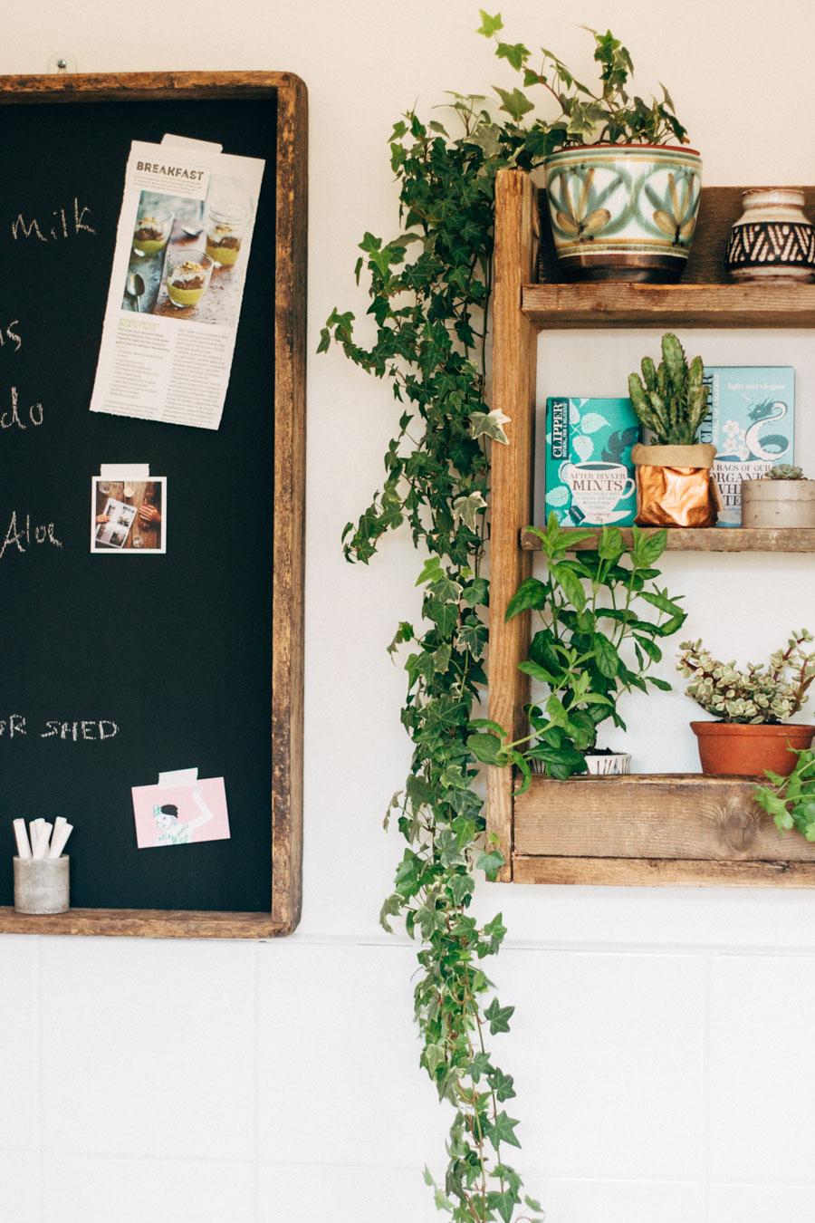 Growing Kitchen herbs