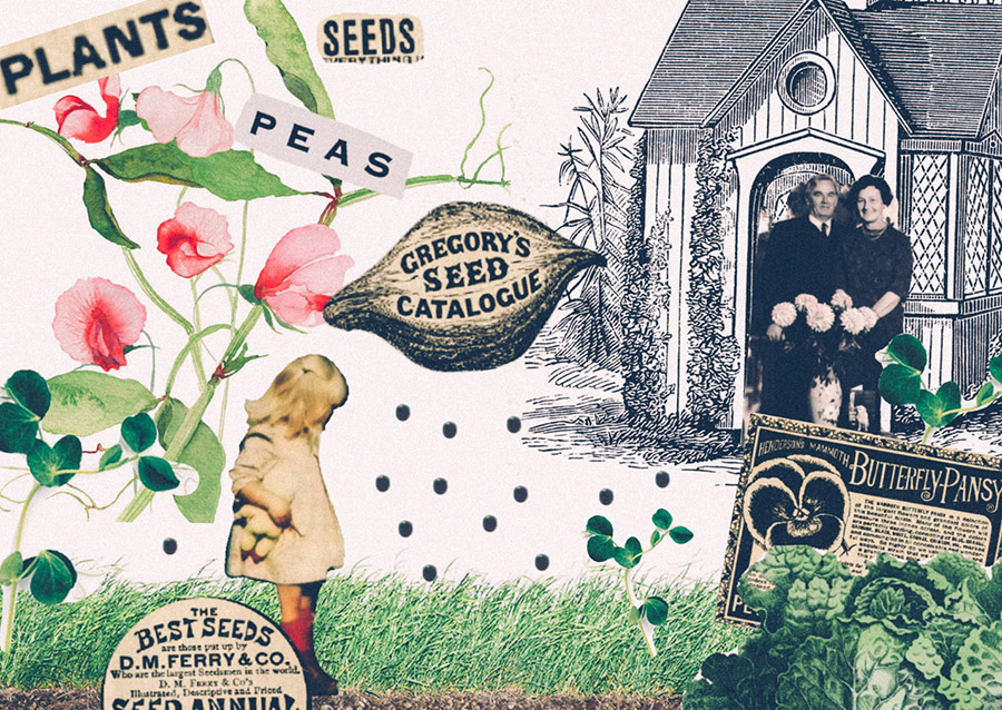 HP Sprout collaged garden journal Tamzin