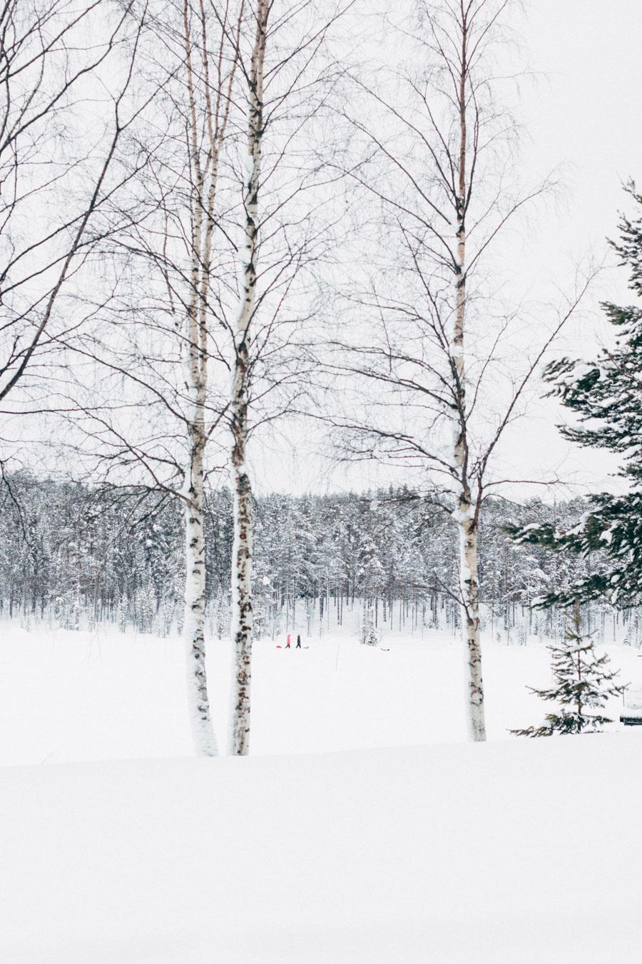 Swedish Lapland Jokkmokk Lake