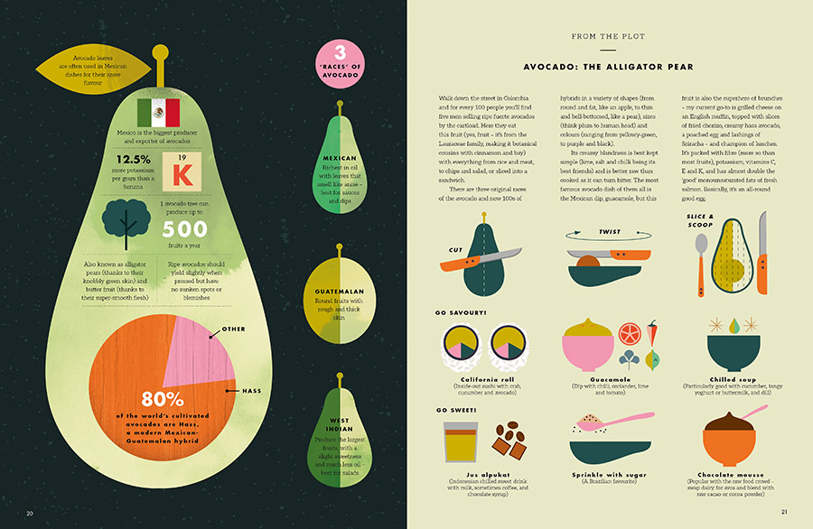 Taste infographic recipe book