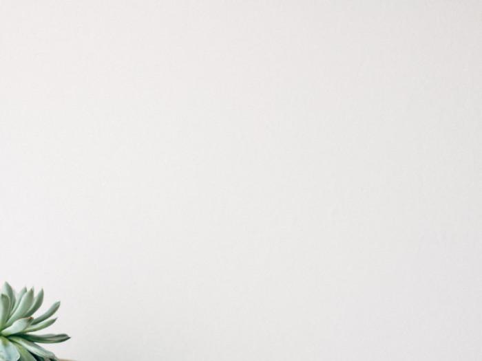 Make a Succulent mandala