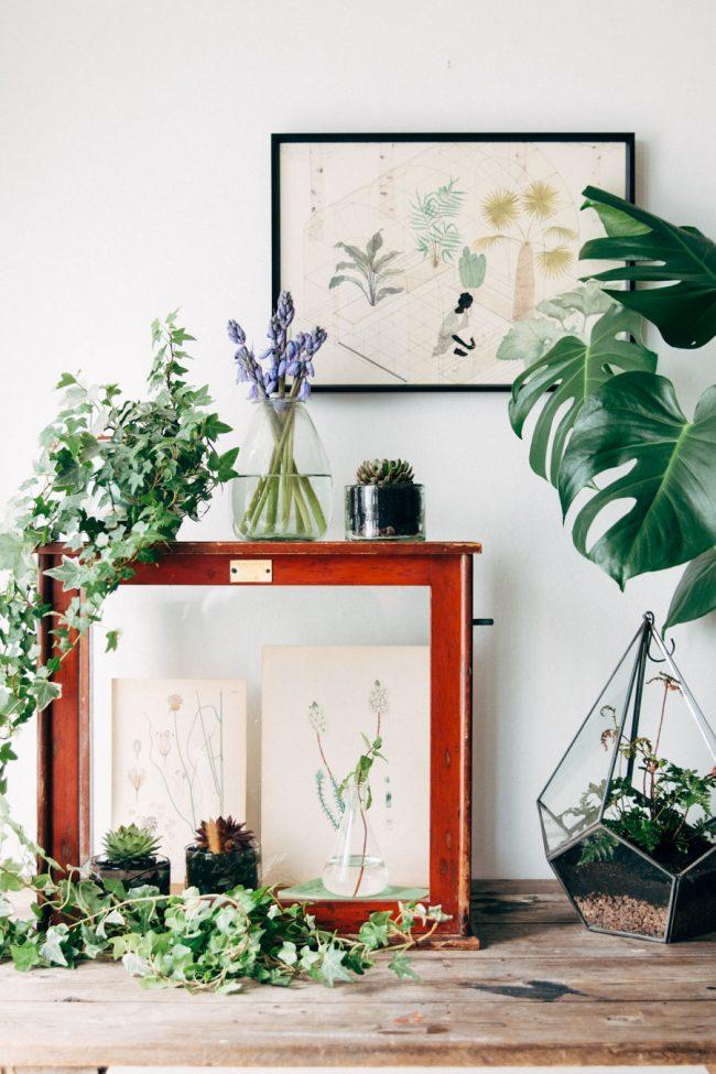 Victorian glass plant cabinet