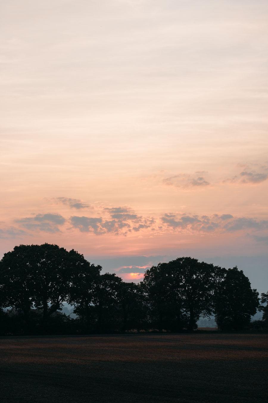 Rosy skyline