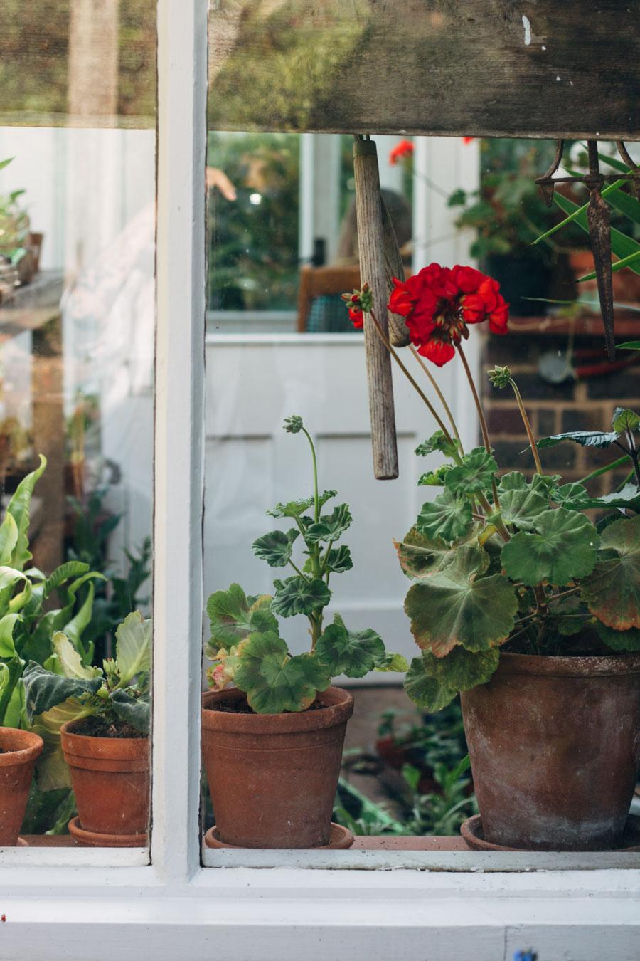Virginia and Leonard Woolf's garden - Monks House