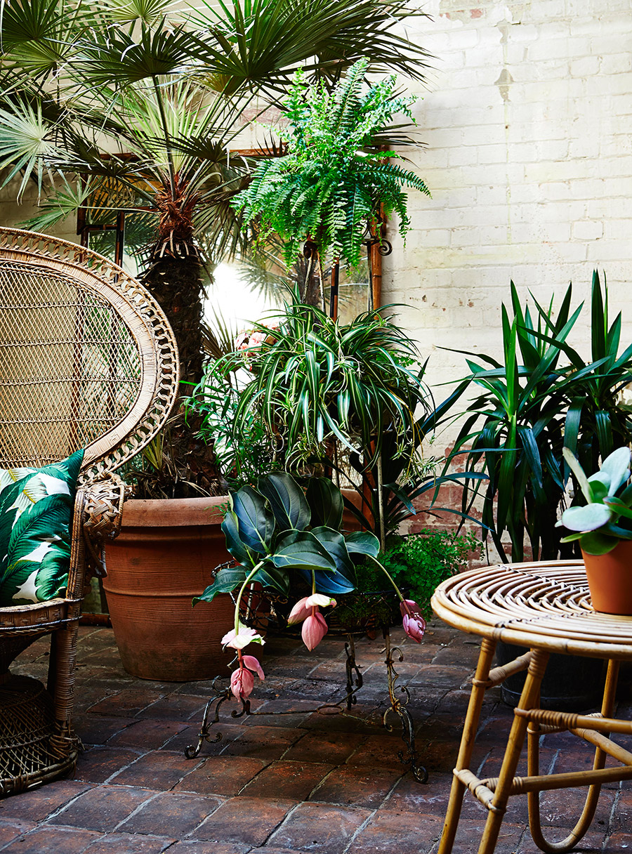 Botanical inspired interiors