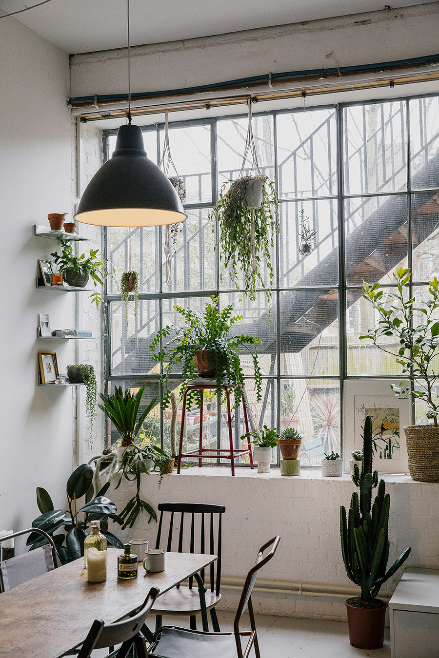 Serene green interiors house of plants lobster and swan for Interior designs with plants