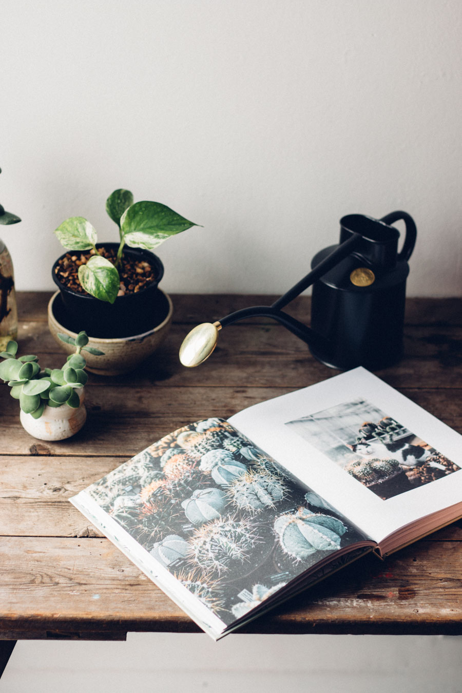 New-Book-House-of-Plants-1