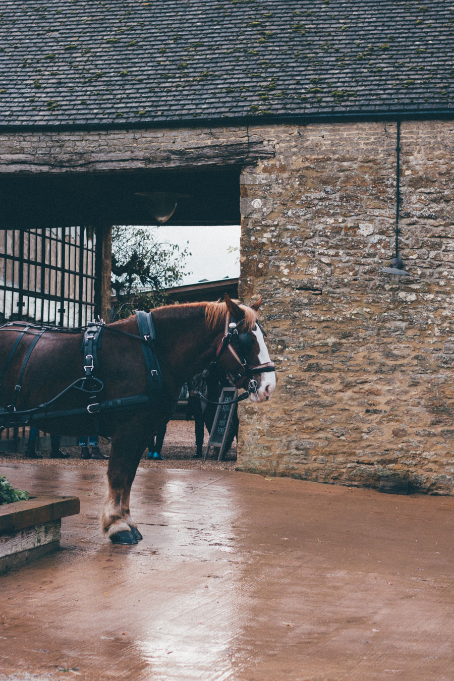 Soho Farmhouse Horse and Cart