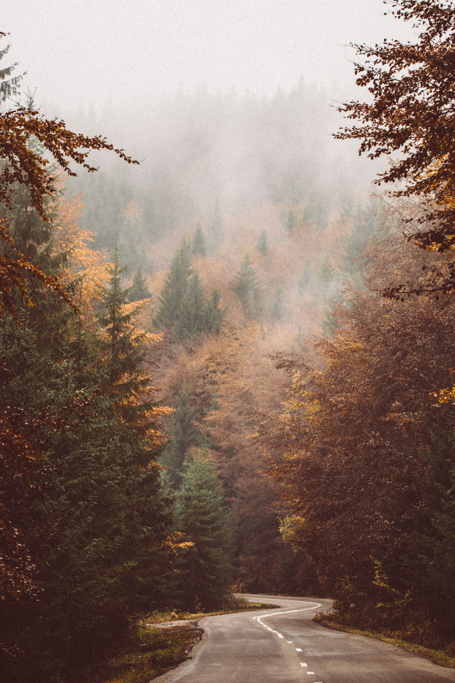 Romanian mountains in autumn