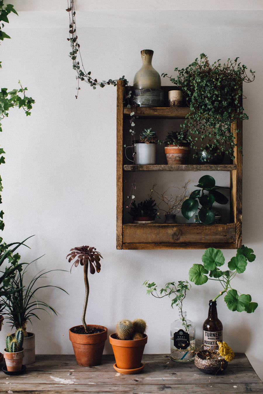 Home office with plants