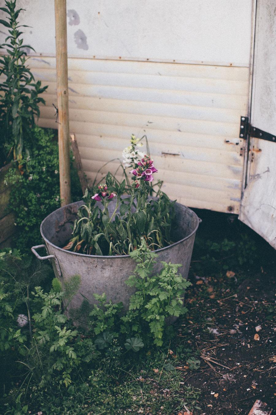 Rustic Garden envy
