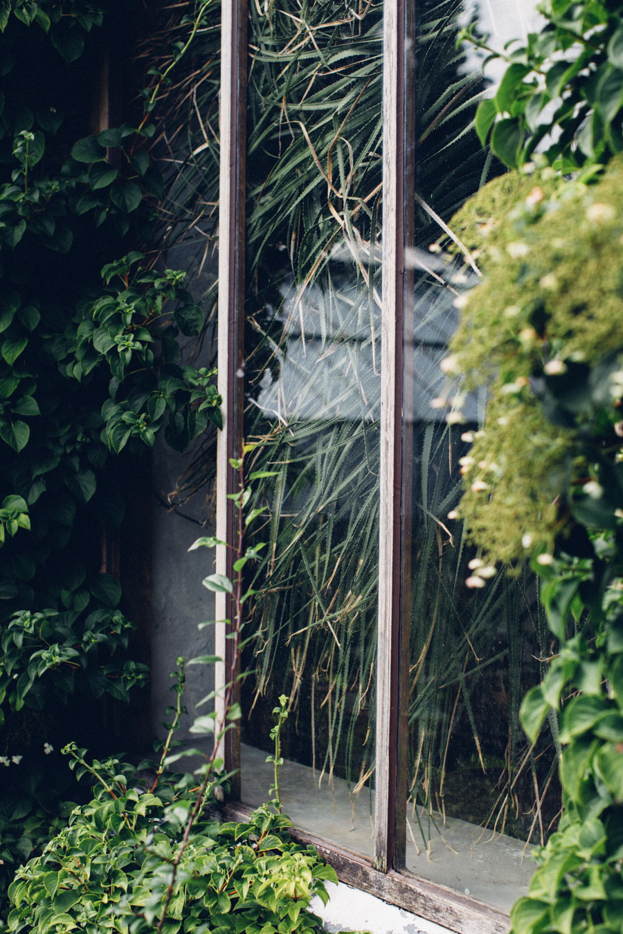 Lund Botanical Garden Hot House