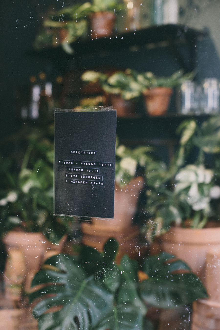 Best flower shop in Malmö - Florista