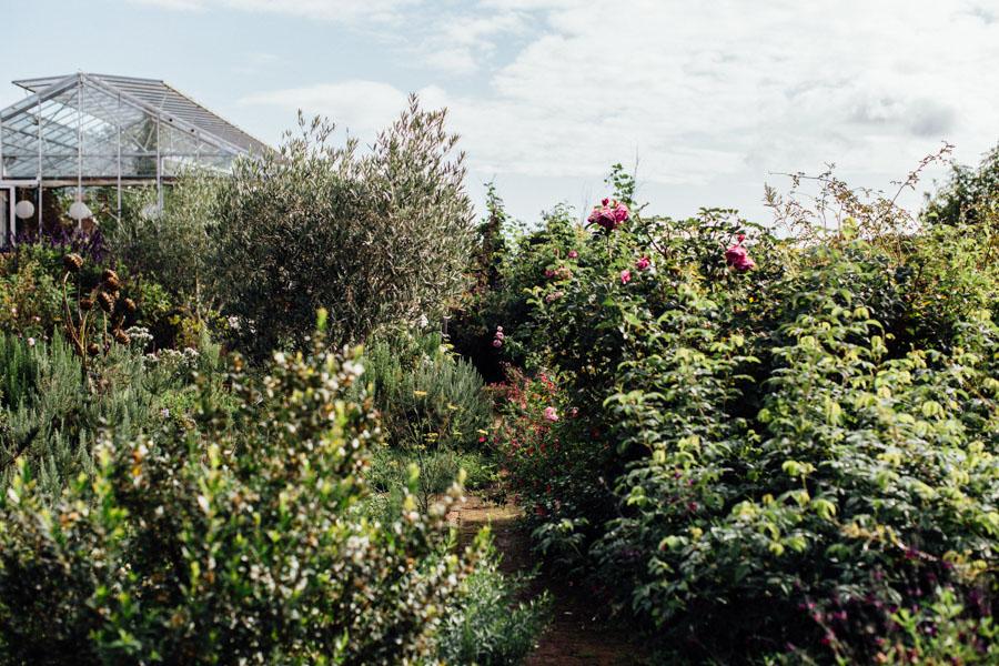 Sarah Ravens Cutting Garden