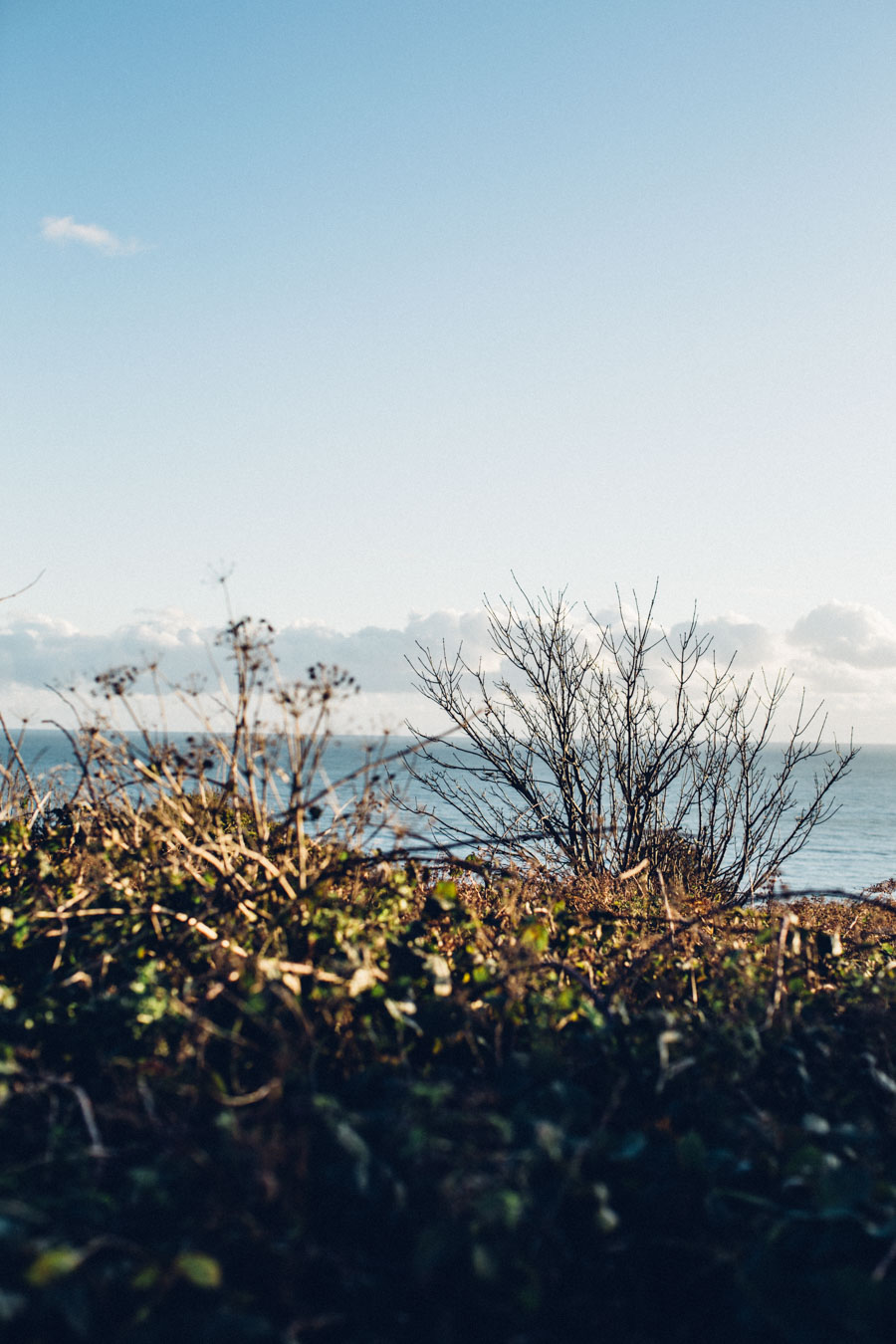 Coastal walks in November