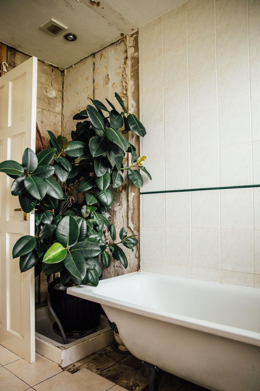 Rustic bathroom dated tiles