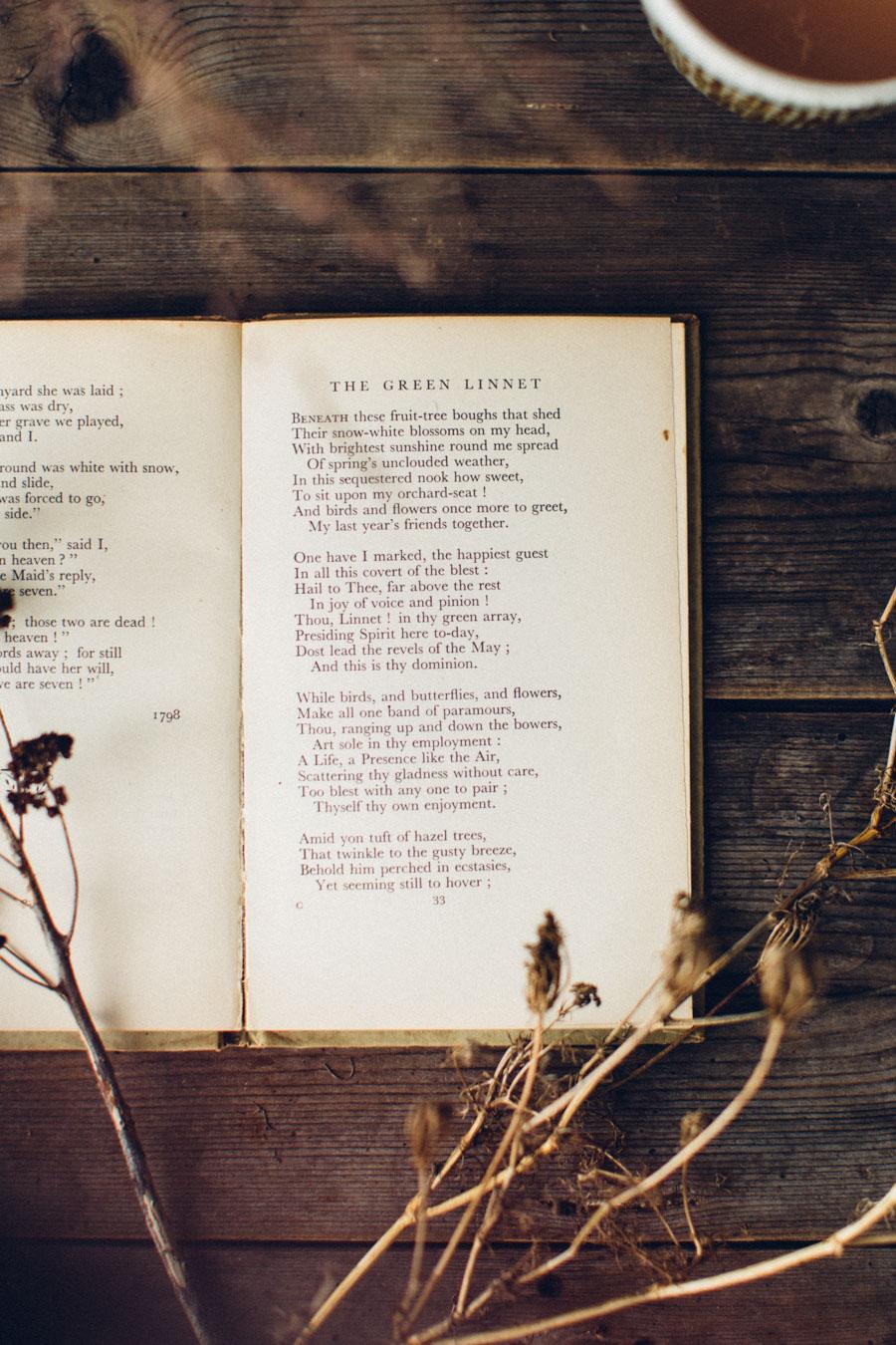 The Green Linnet - Wordsworth