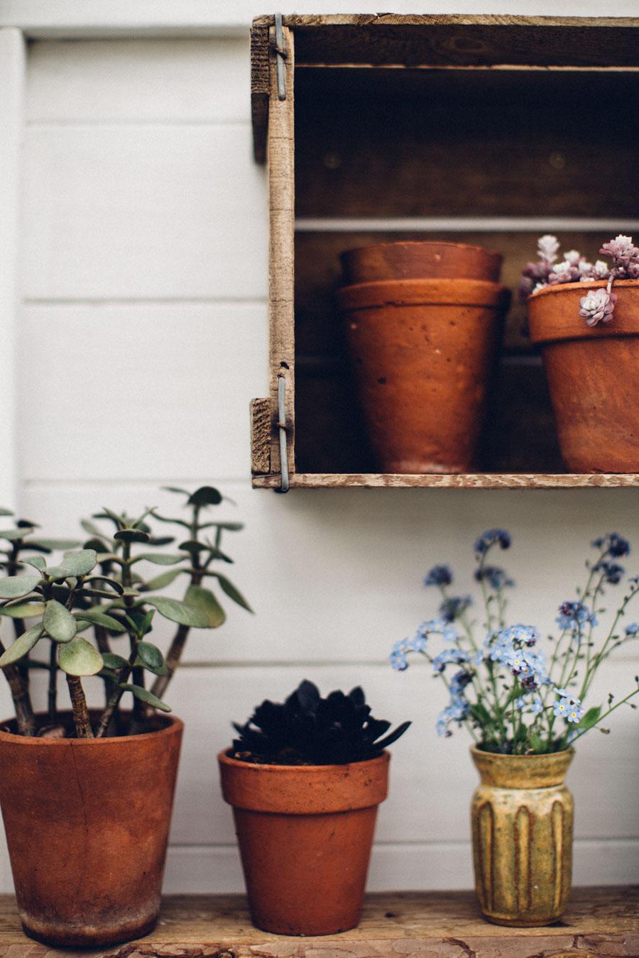 Vintage greenhouse style