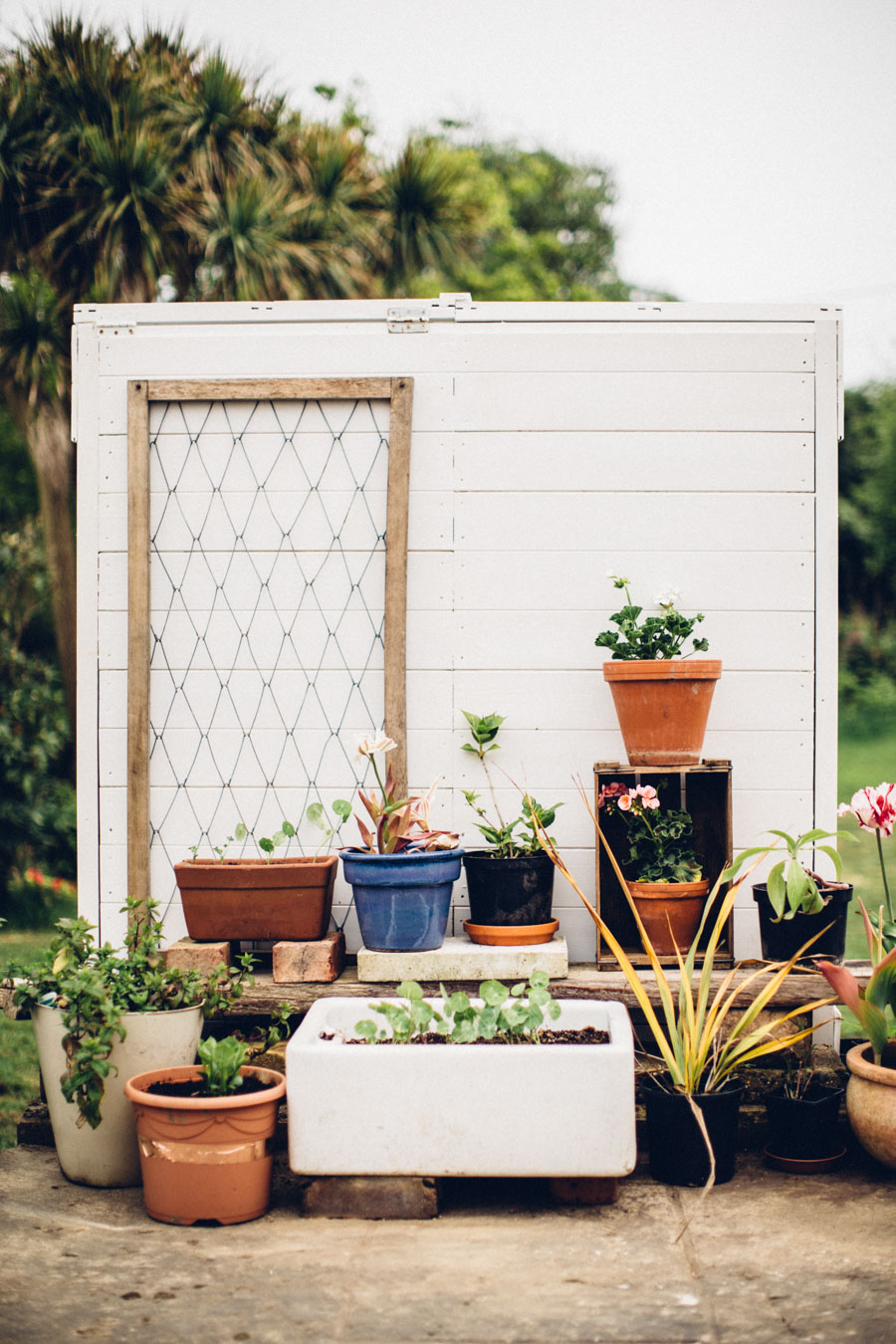 Vintage greenhouse style