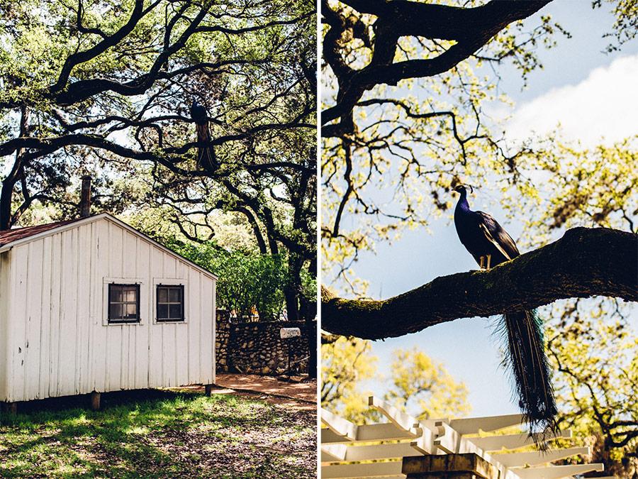 Mayfield Park, Austin, Texas