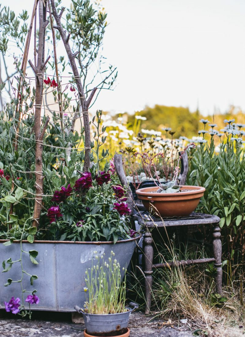 Rustic garden styling