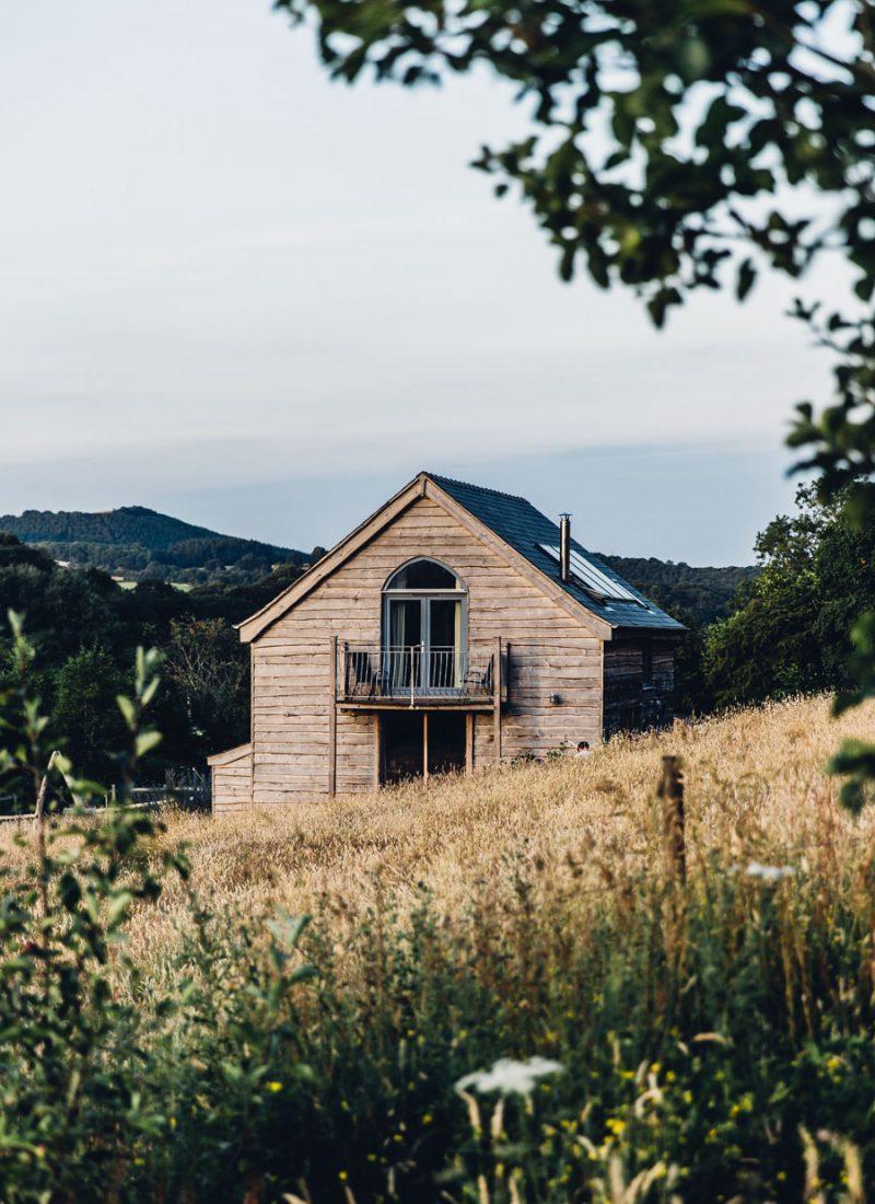 Wild Meadow Wales