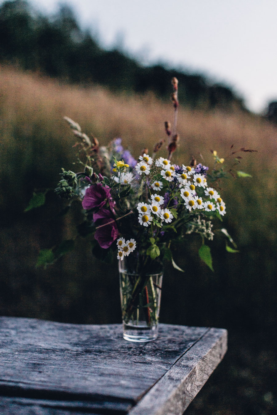 Gathered wildflowers