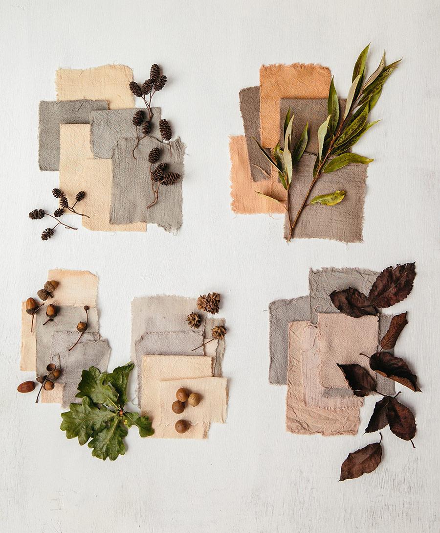 Autumn dye materials - The Wild Dyer
