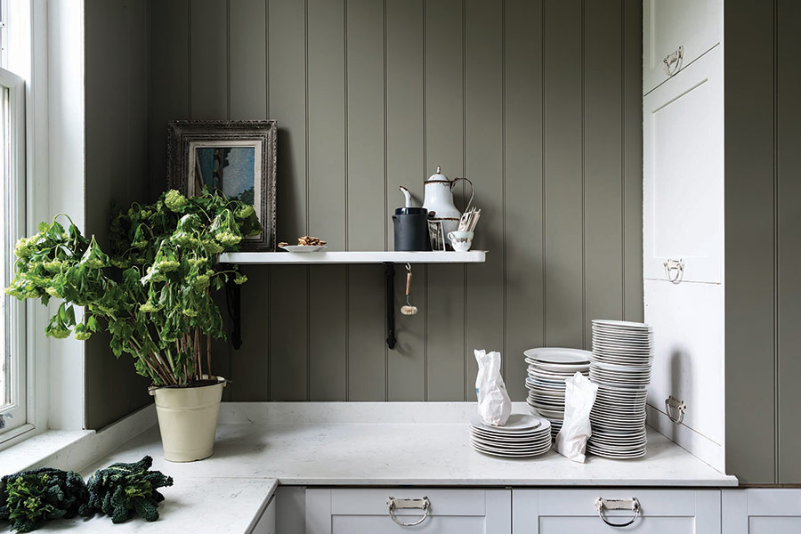 Farrow and Ball Paint Treron