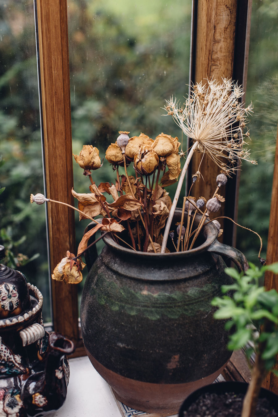 Dried seed heads
