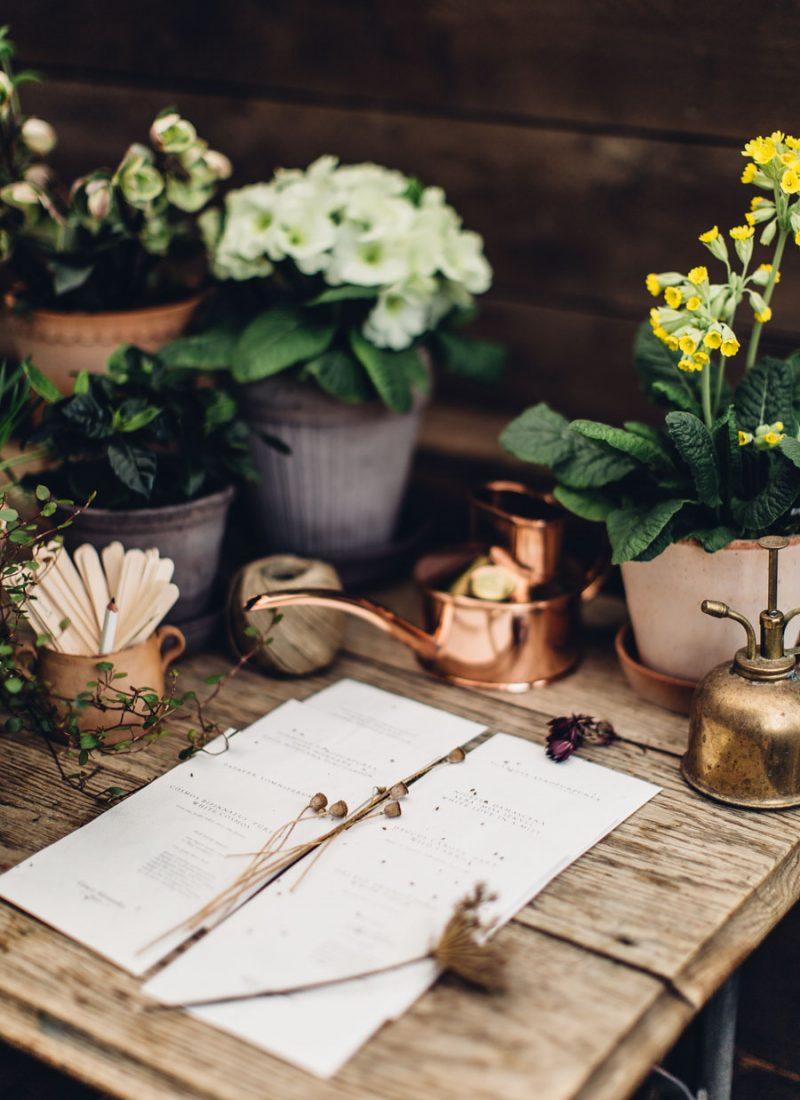 planning a cutting garden